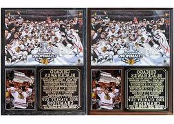 Chicago Blackhawks 2010 Stanley Cup Champions Photo Plaque