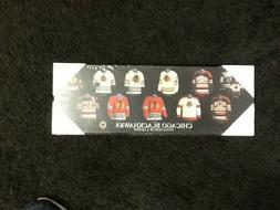 Chicago Blackhawks  Evolution of a Legend Plaque