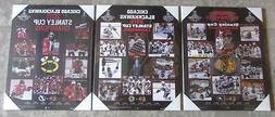Set of 3 Chicago Blackhawks Stanley Cup Championship Picture