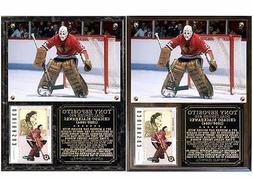 Tony Esposito #35 Chicago Blackhawks Photo Card Plaque Hall